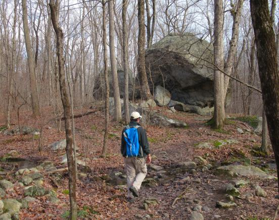 Hiker approaching Bear Rock - Photo by Daniel Chazin