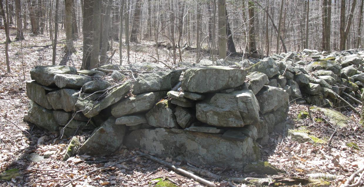 Stone walls along the Indian Hill Loop Trail - Photo by Daniel Chazin