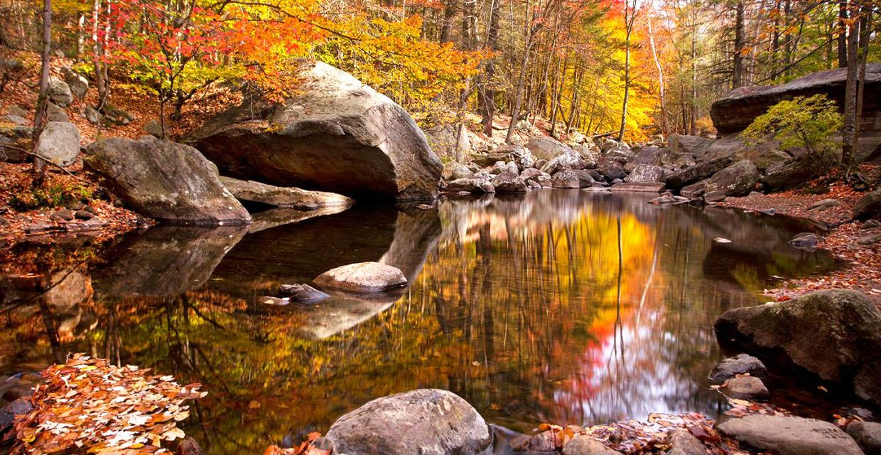 Autumn reflections along the Stony Brook Trail - Harriman-Bear Mountain State Parks - Photo credit: Susan Magnano