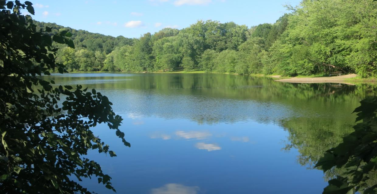View of Scarlet Oak Pond from the Vista Loop Trail - Photo credit: Daniel Chazin