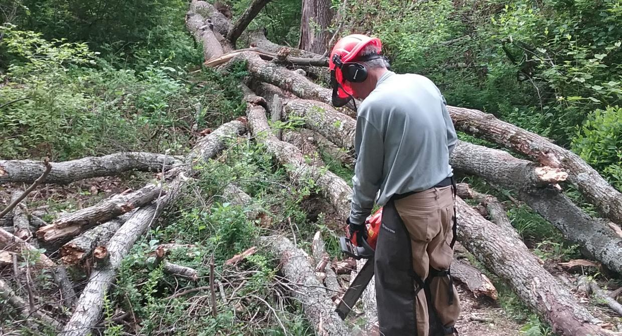Sawyer Alec Maylon clearing blowdowns on Ramapo Reservation's Marsh Trail. Photo by Chris Connolly