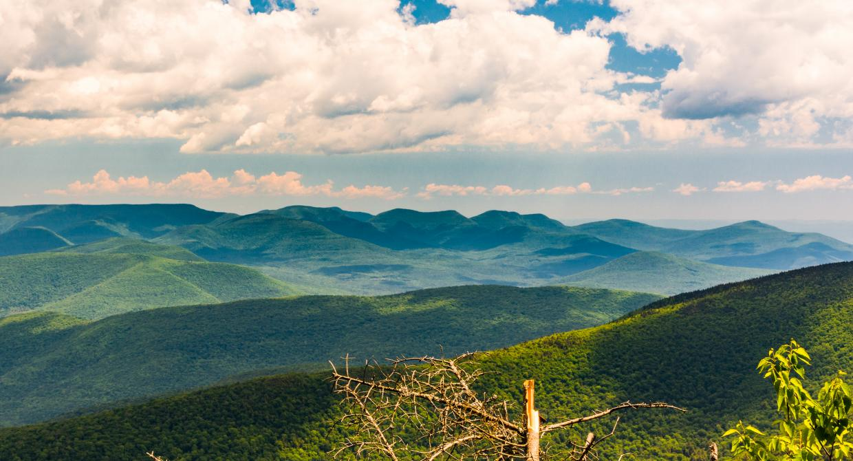 Catskill's Slide Mountain with View of the Devil's Path. Photo by Steve Aaron.
