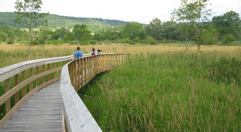 The Appalachian Trail Boardwalk over the Great Swamp in Pawling, N.Y. Credit: New York-New Jersey Trail Conference.