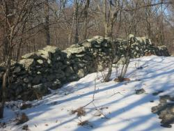 Stone wall along the Catfish Loop Trail. Photo by Daniel Chazin.