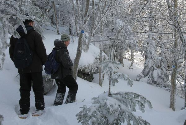 Snowshoeing on Balsam Mountain, Catskill High Peak. Photo by Daniel Chazin.