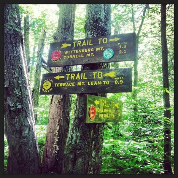 Adopt a trail in the Catskill Park!